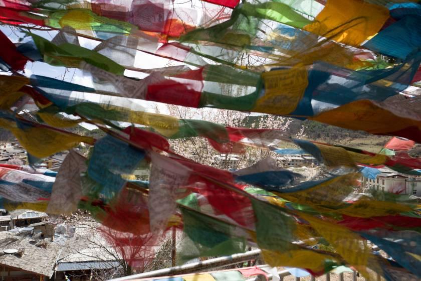 vlaggen-(web)